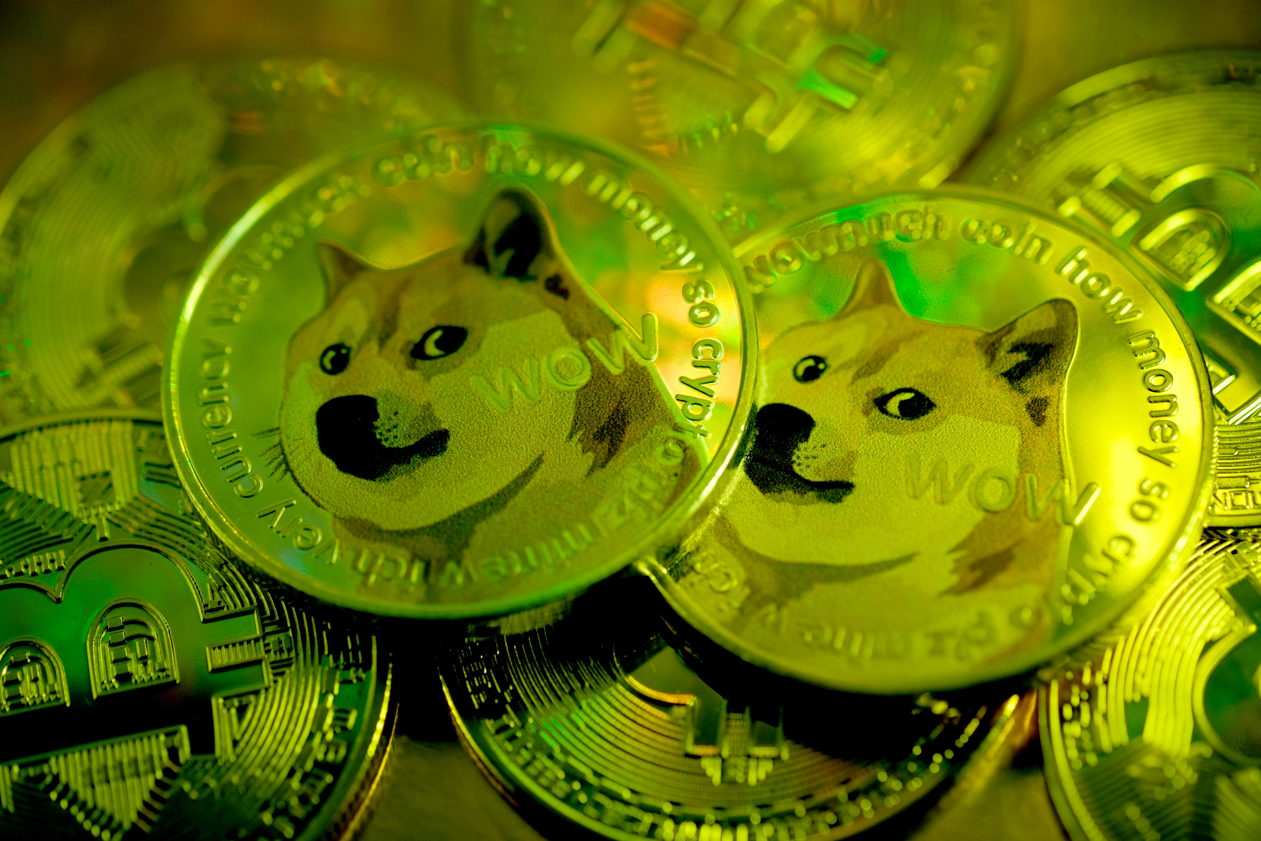 Dogecoin Price Tracker Updates As Cryptocurrency Value Soars