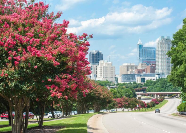#82. Raleigh, North Carolina