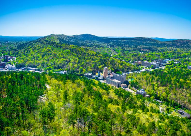 #47. Arkansas