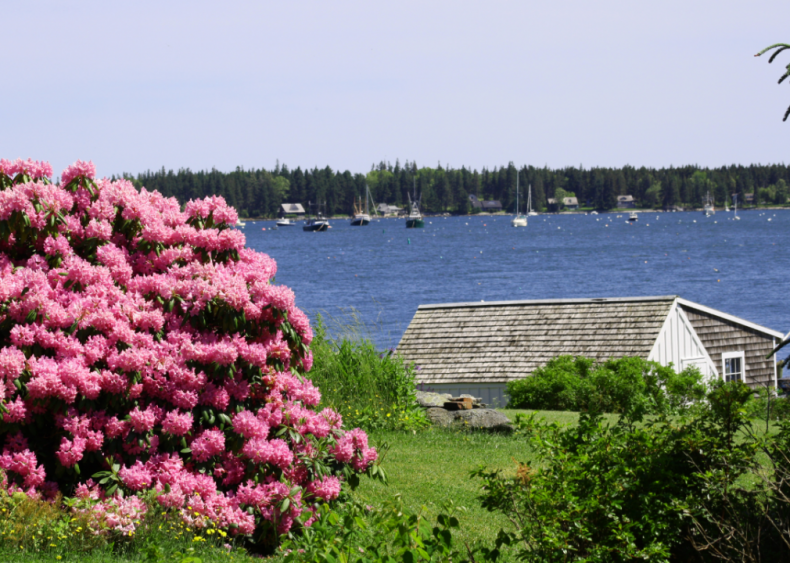 #30. Maine