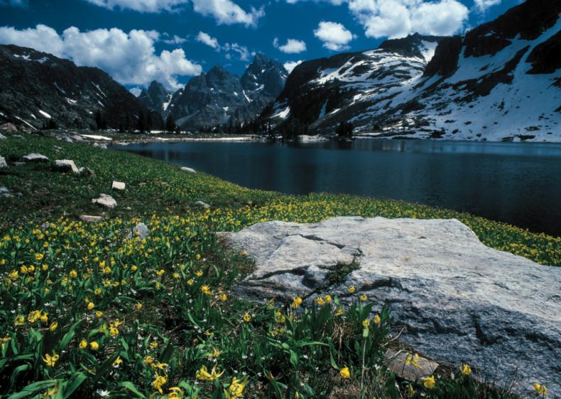 #27. Wyoming