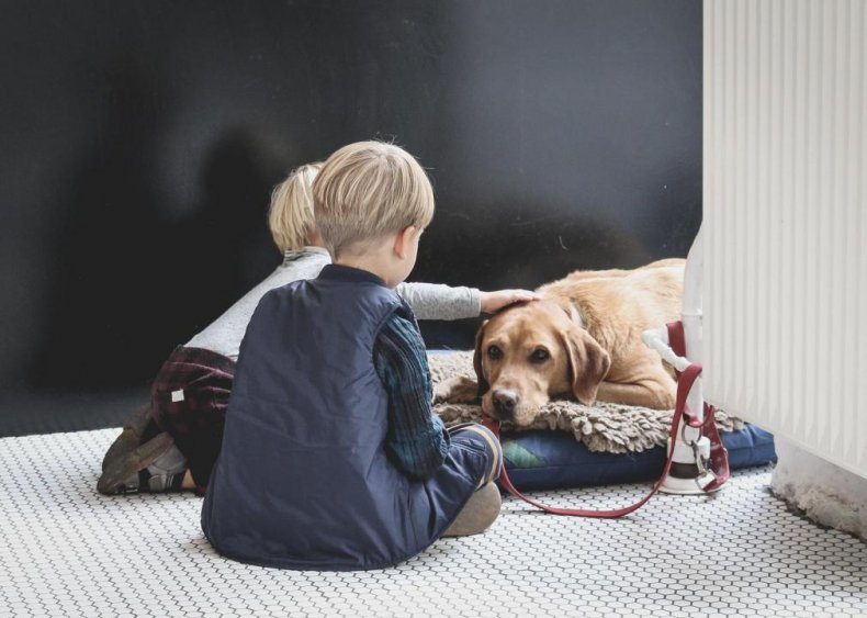Can dogs and other pets get COVID-19?