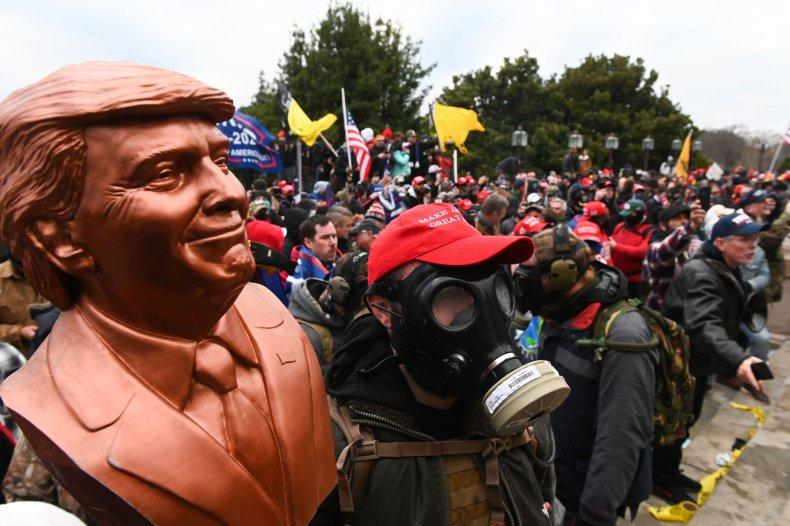 donald, trump, protests, capitol, building