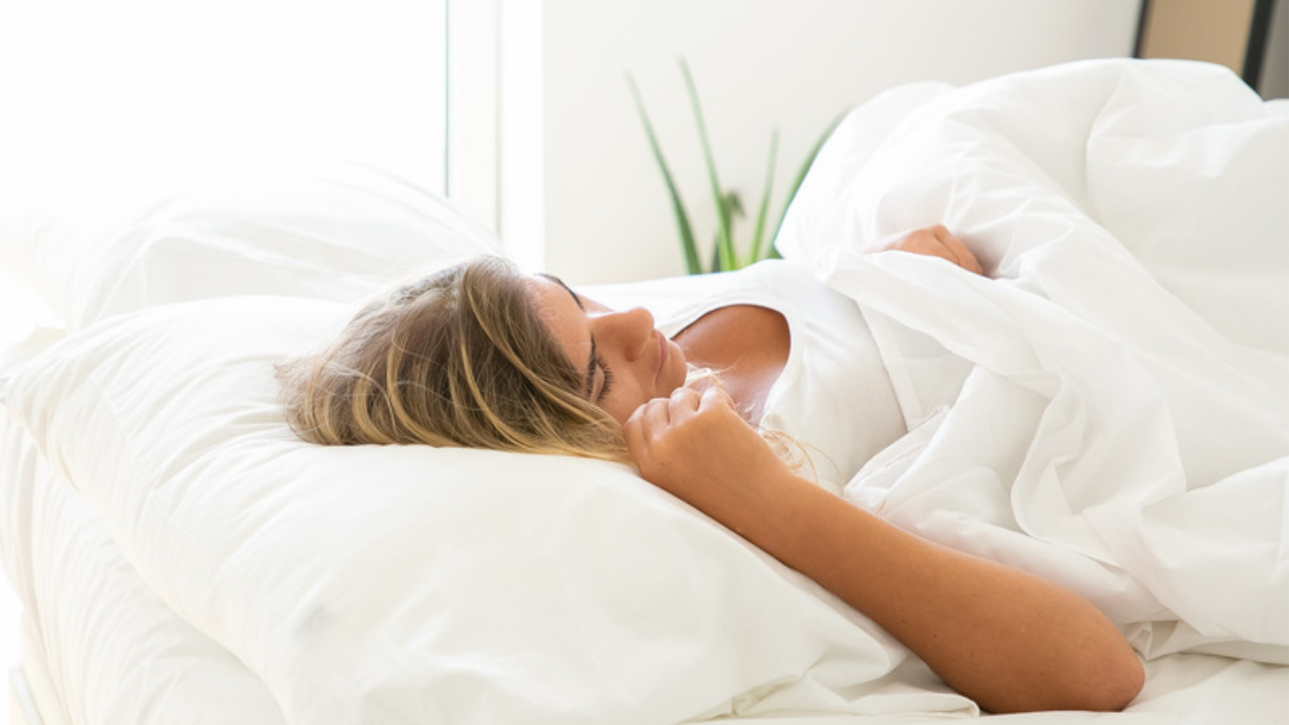 Sleep Better with Menolabs cover image