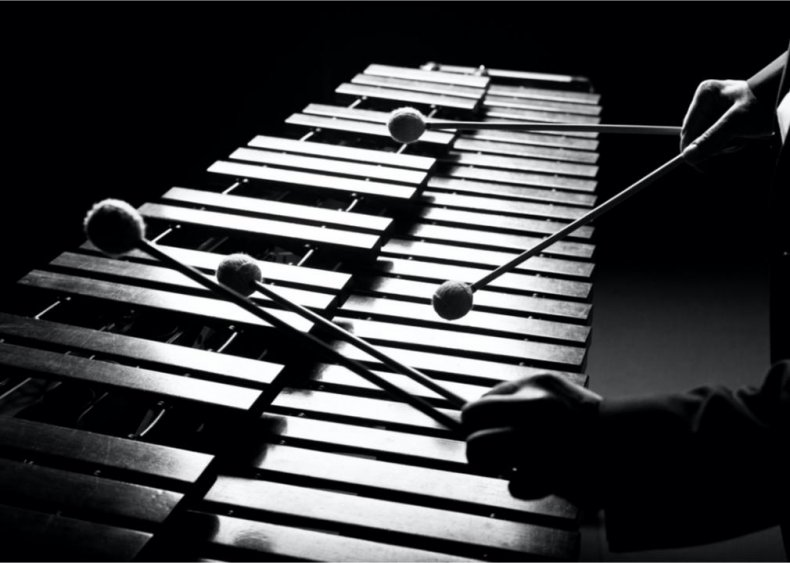 The vibraphone