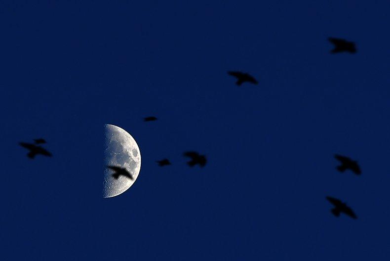 Moon in Italy