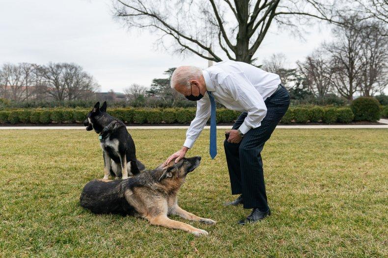 Joe Biden, Champ, and Major