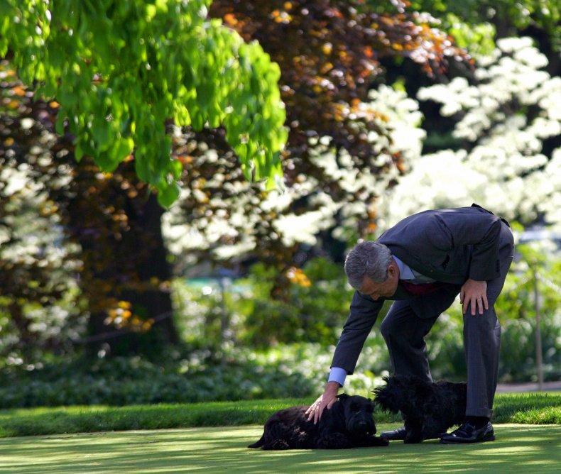 George W. Bush, Barney, and Miss Beazley