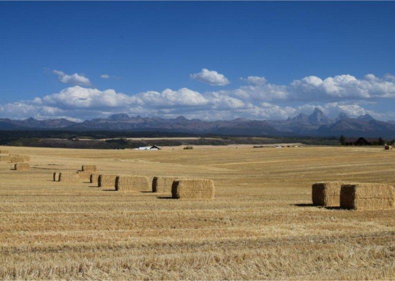Montana: Valley County