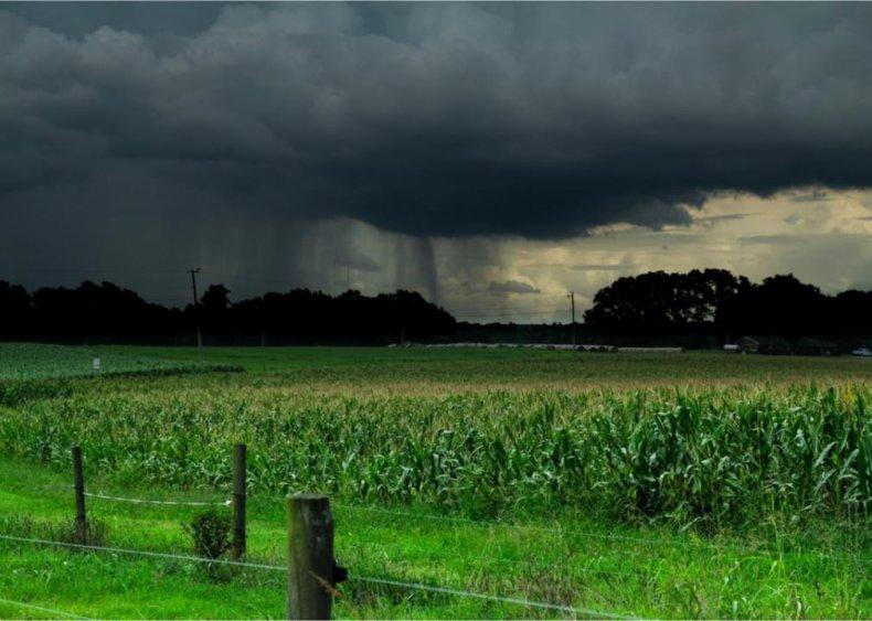 North Carolina: Wake County
