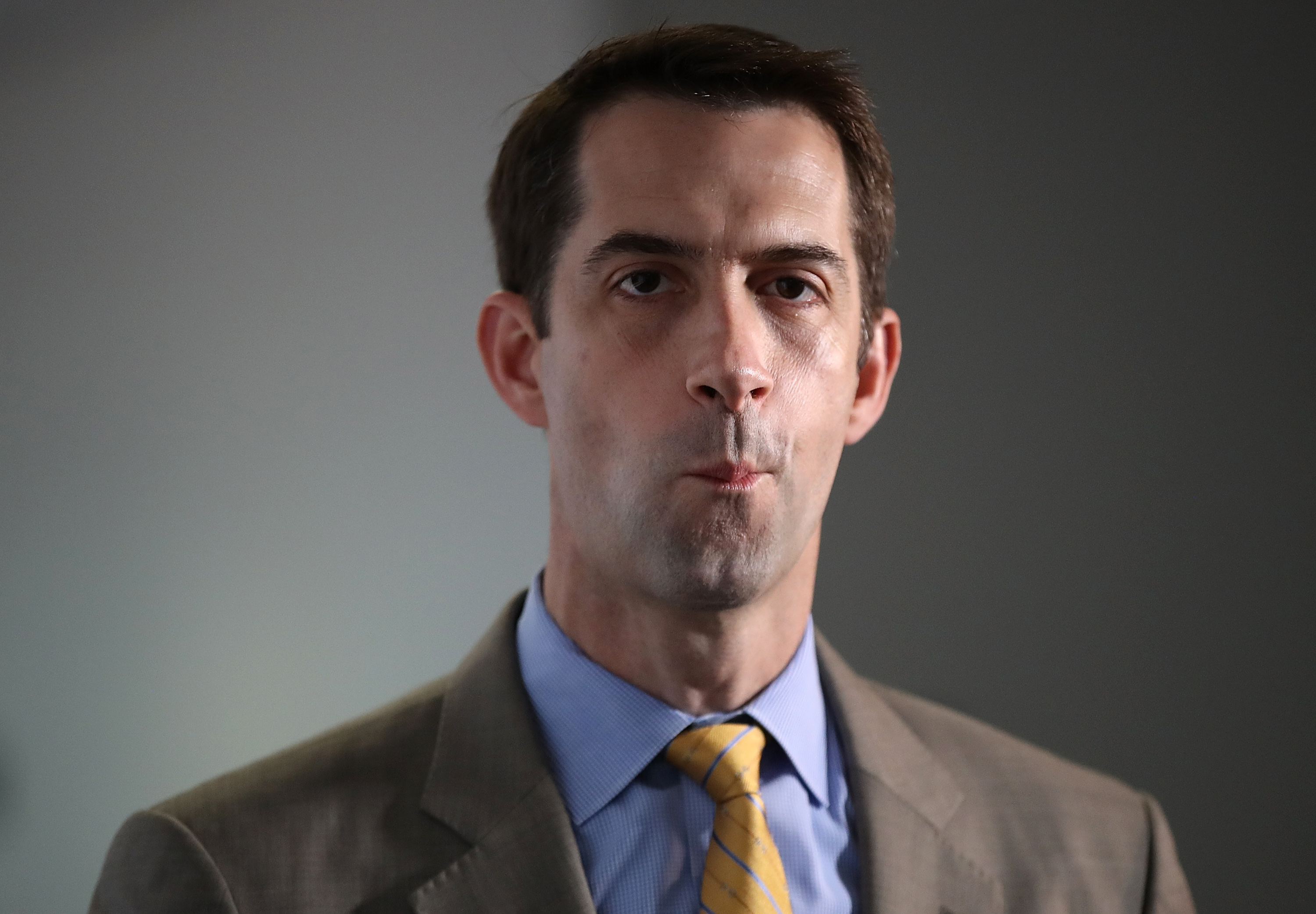 Tom Cotton, Mitt Romney's $10 Minimum Wage Plan Criticized for Being Less than Arkansas' $11 thumbnail