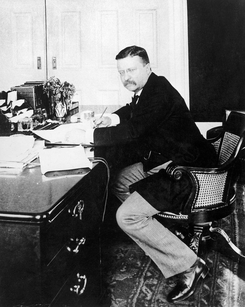 Theodore Roosevelt White House 1902