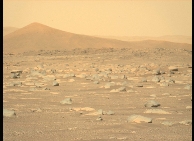 Mars image captured by NASA's Perseverance rover