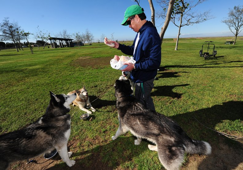 California dog park feeding 2012