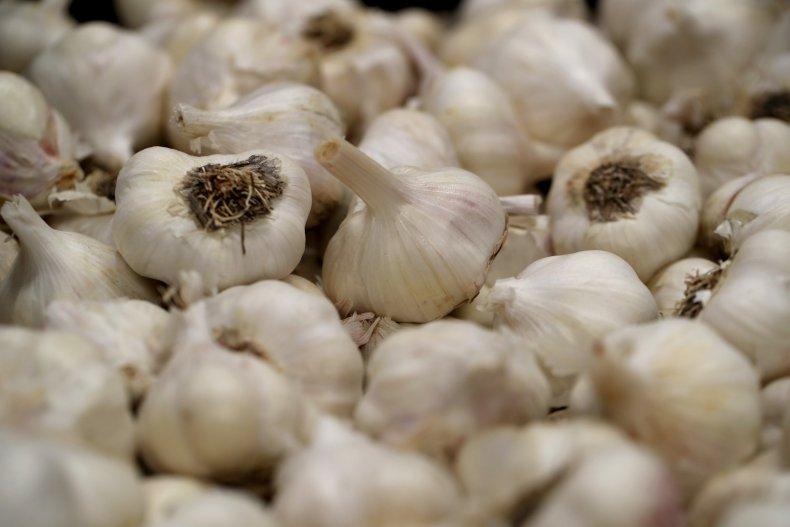 Garlic at California ranch 2019