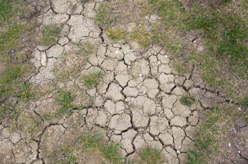 cracked land