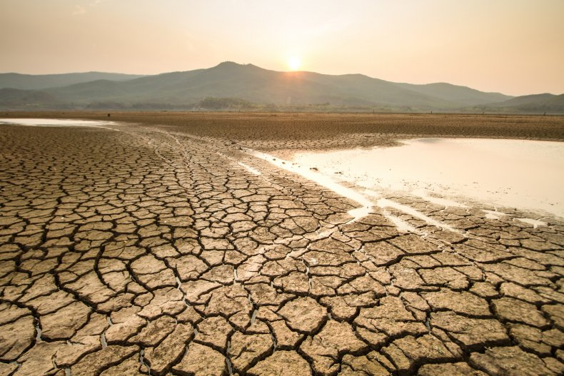 Dry land 2