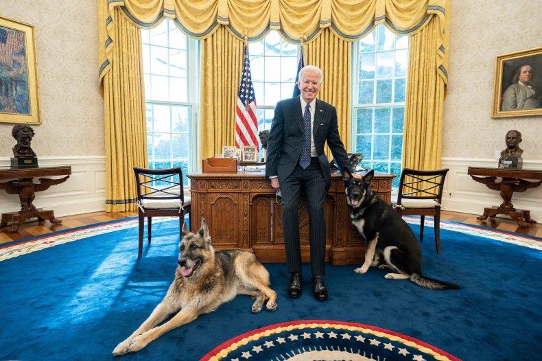 President Joe Biden, Champ, and Major