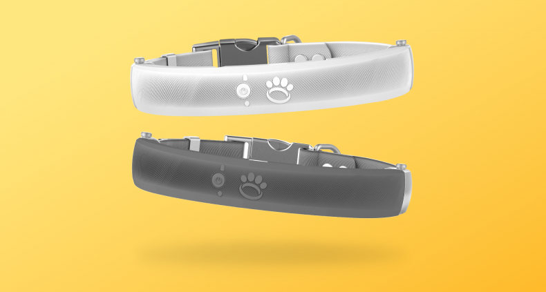 Smart Fence Technology Dog Collar