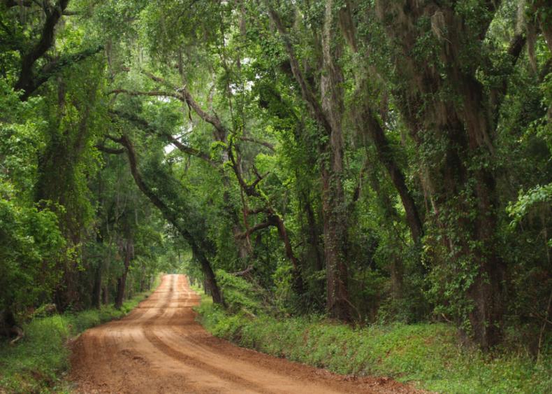 Georgia: Clay County