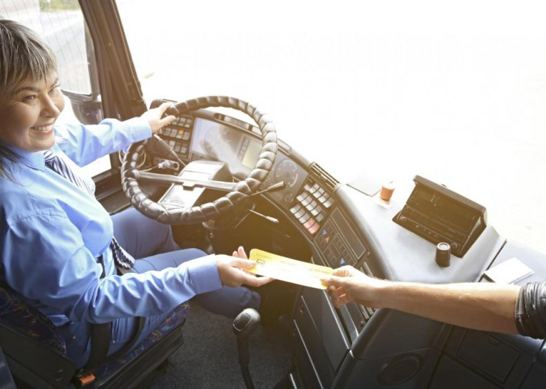 Bus drivers, transit and intercity: New York