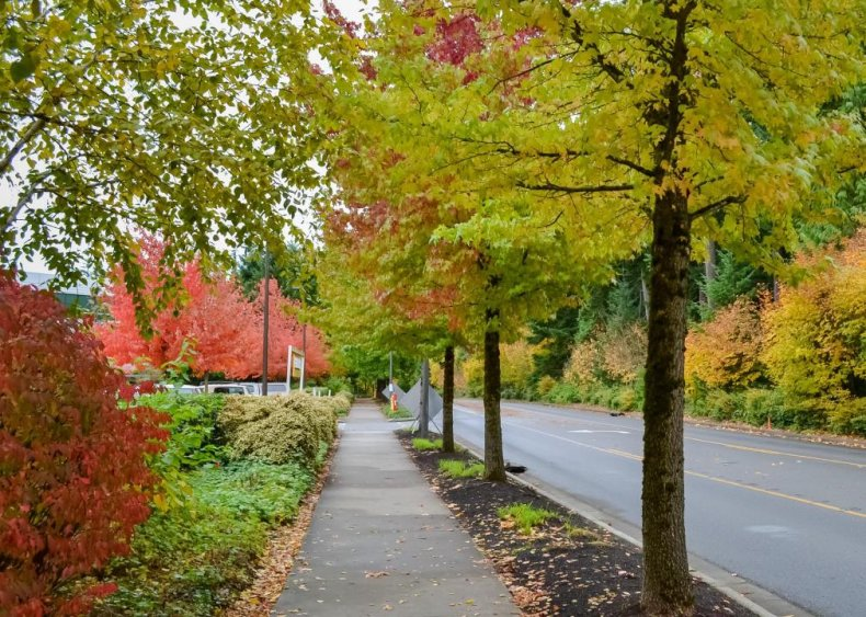 Washington: Redmond