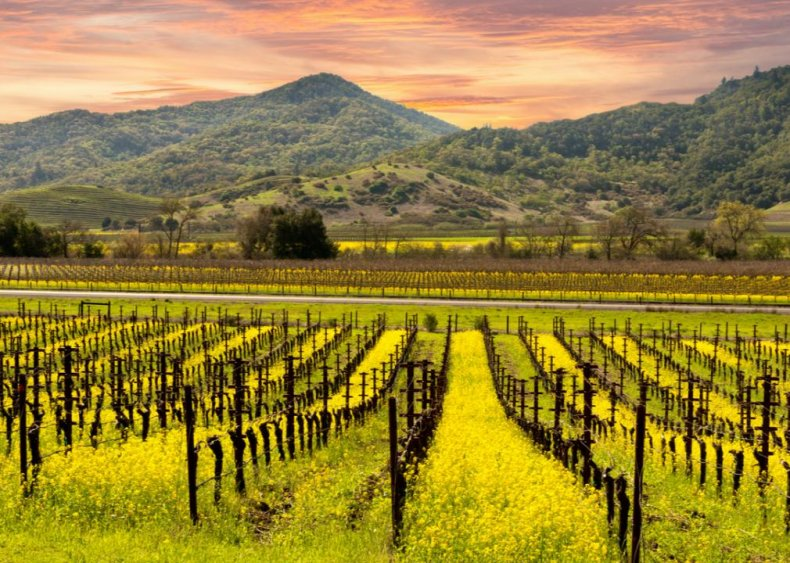 #21. Yountville, California