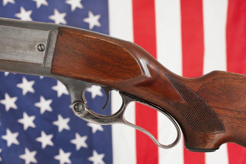 South Carolina Gun Control Militia Mass Shooting