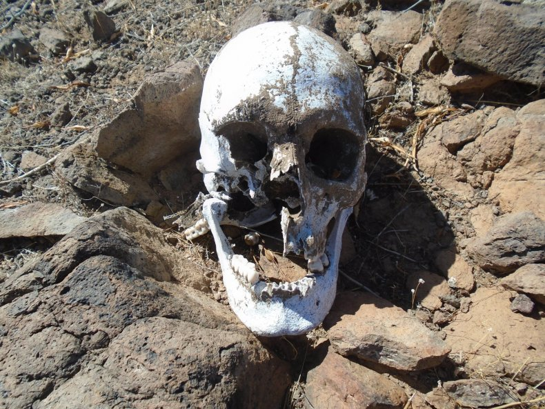 Human remains Arizona