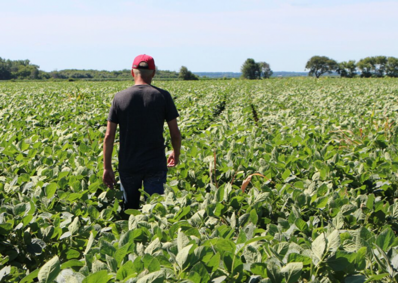 Farmers in the US are overwhelmingly white