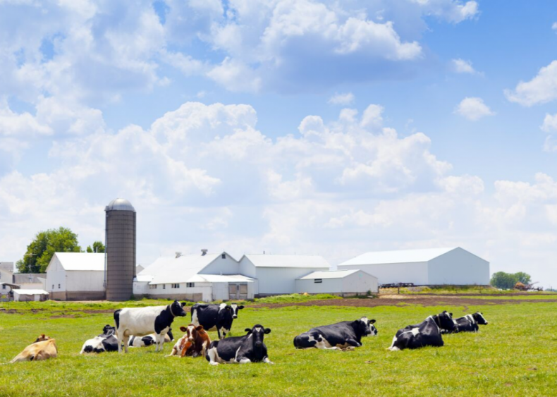 Wisconsin stands to lose the most in a dying dairy industry