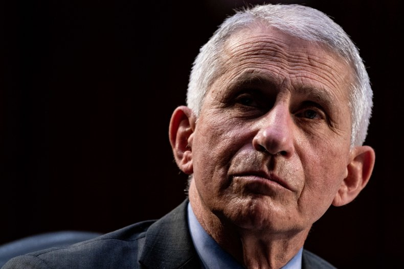 Dr. Anthony Fauci During a Senate Hearing