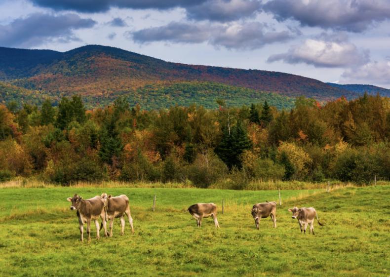 #48. New Hampshire