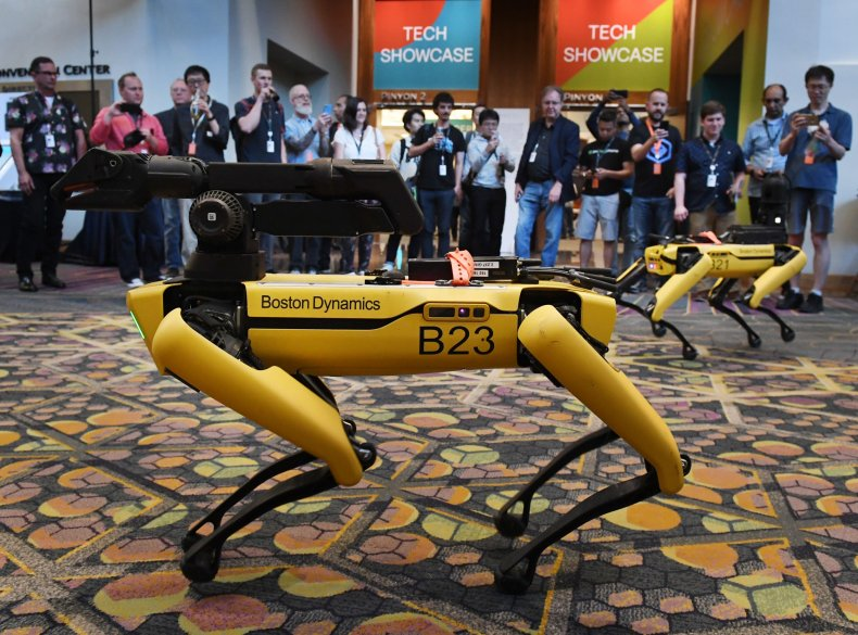 Robotic dog built by Boston Dynamics
