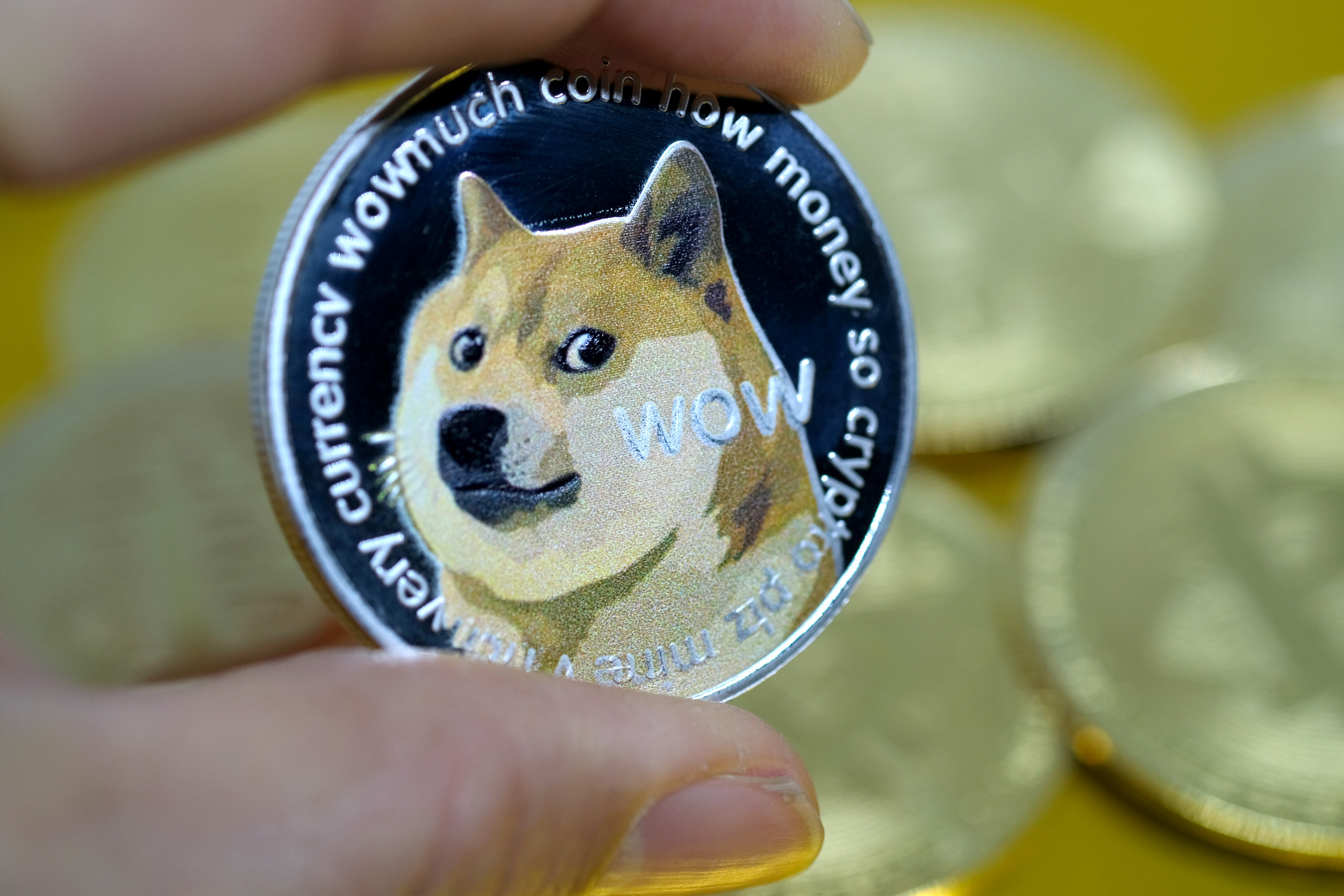 Why Did Dogecoin Spike? Meme Cryptocurrency's Fans Rejoice As Token Hits All-time High