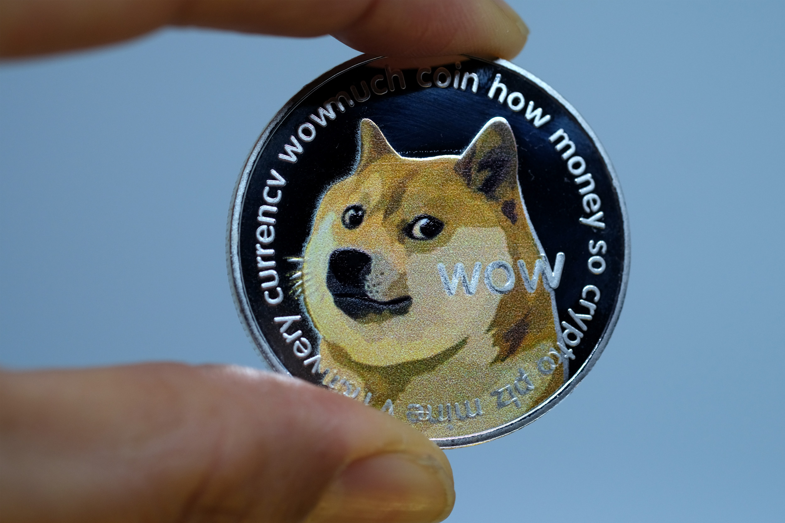 Hacker Changes Governor Candidate Tim Fox's Twitter Account Picture to Tesla, Posts Dogecoin Updates