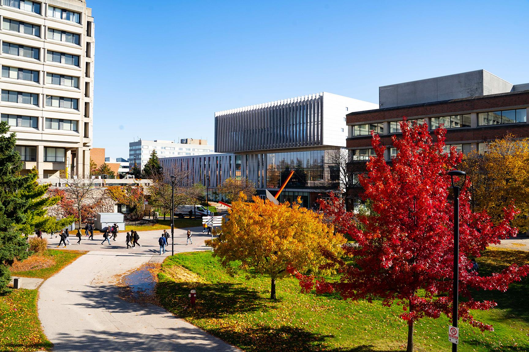 York University, Faculty of Environmental and Urban
