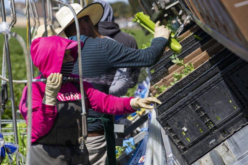 Migrant workers Oxnard