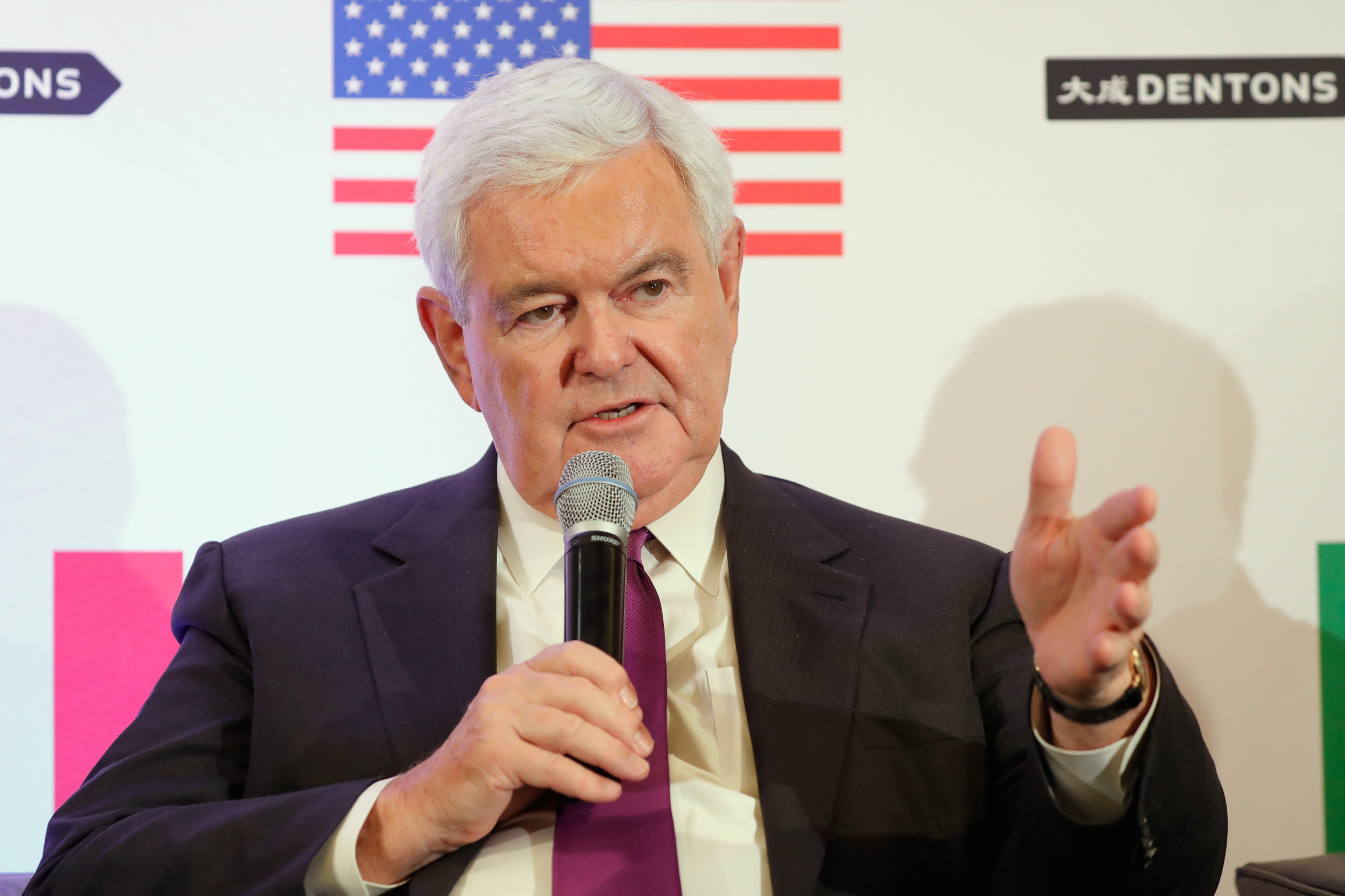Gingrich Blasts Democrats' Defense of Waters: 'Civilization Is at Threat'