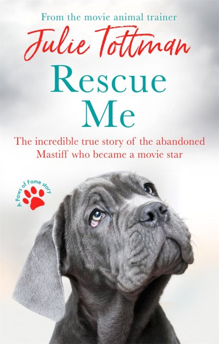 Rescue Me by Julie Tottman