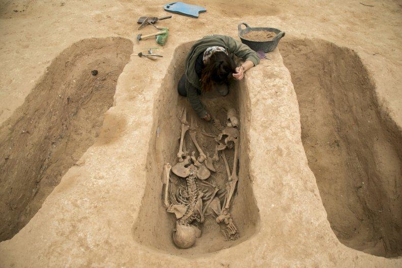 Contractors Discover Five Human Skeletons
