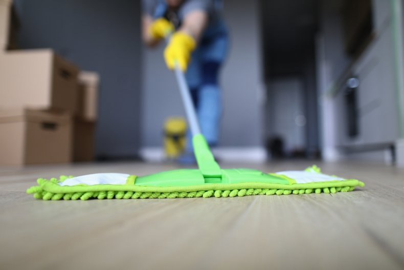 Stock image of a cleaner and mop