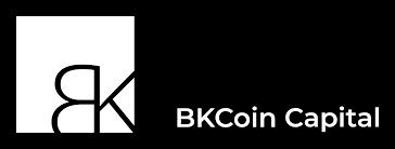 BKCoin Capital logo