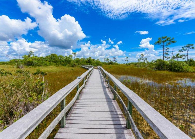 #25. Everglades National Park