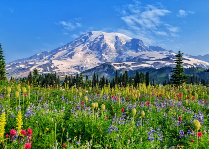 #18. Mount Rainier National Park