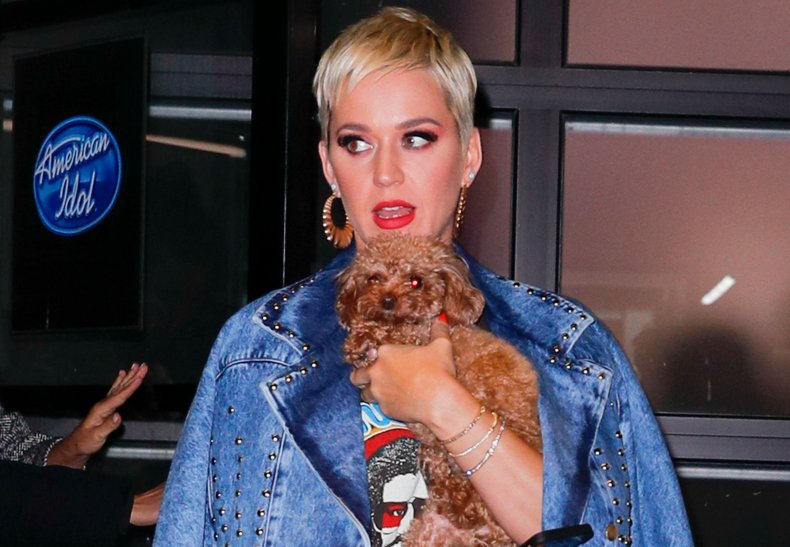 Katy Perry and her dog Nugget