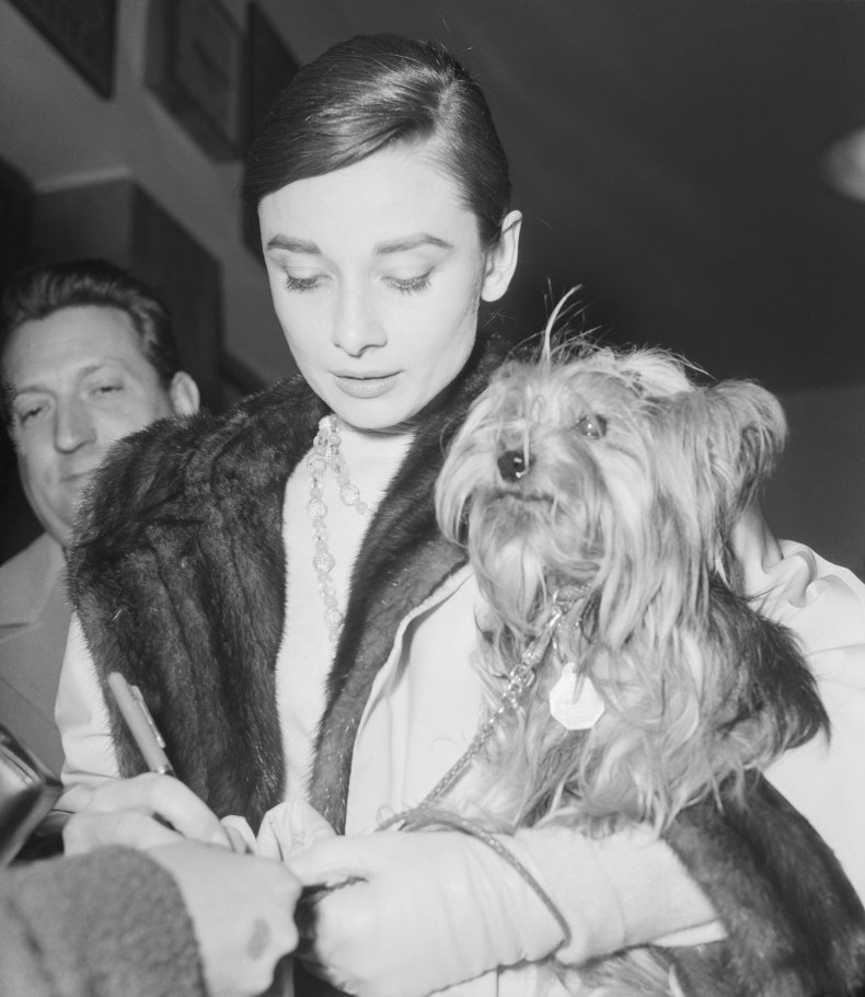 Audrey Hepburn and her dog Mr Famous