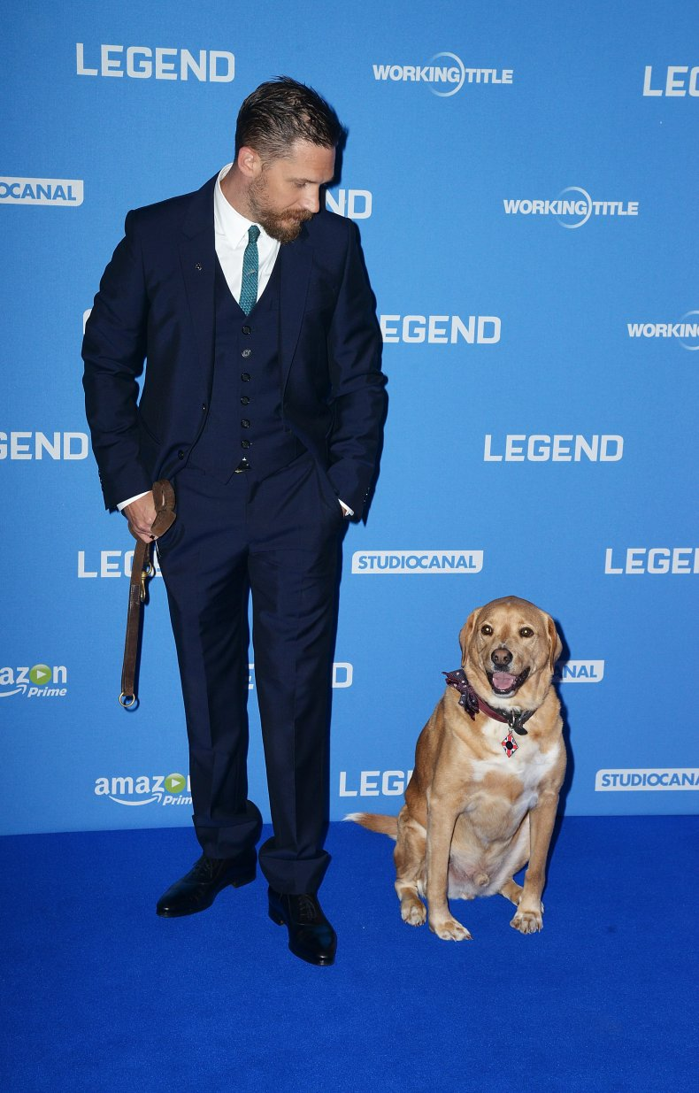 Tom Hardy and dog Woody at Legend