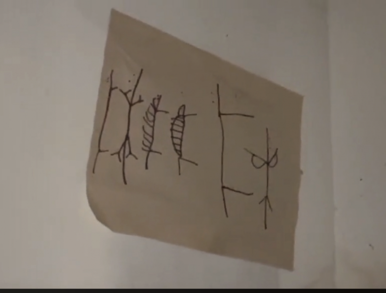 Couple Finds Strange Drawing in the House