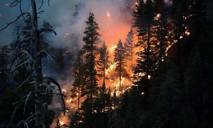 Bobcat Fire 2020